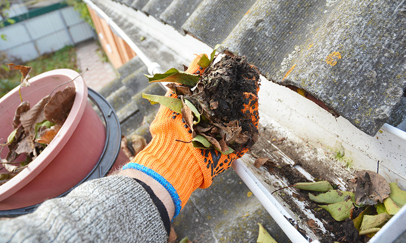 Gutter cleaning and exterior home maintenance in Lawrence, Kansas and surrounding areas